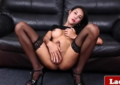 Astounding busty ladyboy strips and jerks solo
